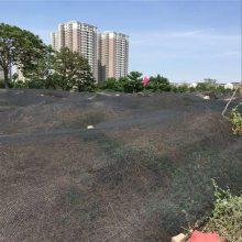 建筑工地防尘网 煤堆防尘网 三针盖土网