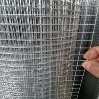 铁丝网 包塑铁丝网 热浸镀锌电焊网 圈玉米网