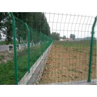 崇阳农田绿色保护围网价格 耕地围栏网规格 专业生产稻田防护网 农田保护网