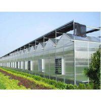 绿农阳光板温室