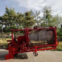 油沙豆收获机工作视频 四轮带元胡麦冬收获机 直接装车式球形药材挖掘机