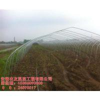 安徽农友(图)|农用大棚|安徽大棚