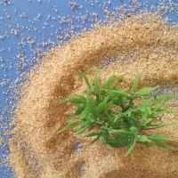 热销天然海沙 80-120目水洗石英砂 沙滩用黄沙 量大价优