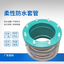 龙图DN80柔性密闭防水套管