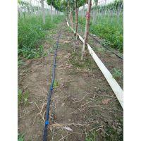 果树滴灌、压力补偿滴头、节水灌溉、pe滴灌管