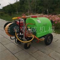 厂家批发300L园林手推式打药机 志成牌四轮推车式喷雾机 拉管式汽油机动洒水车