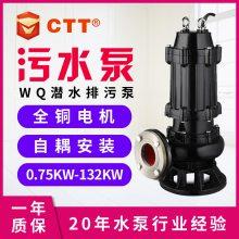 搅匀式潜水排污泵 JYWQ 搅匀式潜水排污泵
