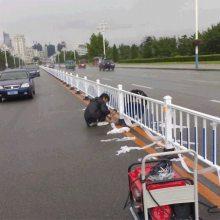 广州工程市政围栏现货 梅州甲型防撞护栏 深圳港式道路护栏厂家