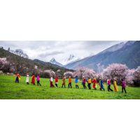 深圳去西藏自驾游推荐:G318川藏线+青藏线11天#15天品质自驾游
