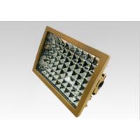 新黎明CCD97防爆投光灯LED防爆灯200W价格