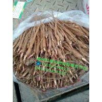赤芍芽价格/赤芍种子多少钱一斤/赤芍苗培育基地