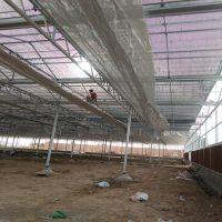 供应供应温室大棚 内遮阳系统 降温系统 大棚设施