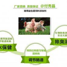 养猪喂什么能调节肠道猪用益生菌七天见效