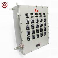 防爆配电箱 升羿防爆控制箱 非标定做 照明动力配电箱 按钮开关控制箱