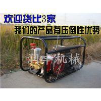 手推车一样好用的高压喷雾机 自动水状喷雾机润丰