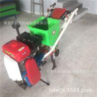 高效花生播种机械 可定做两行玉米精播机 农用种植施肥机械