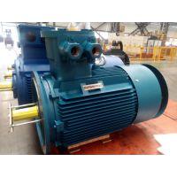 YB3系列高压隔爆型三相异步电动机ZODA中达电机