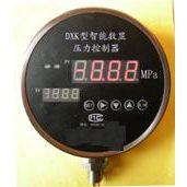 中西智能数显压力控制器型号:CAFE2-DXK-GP-2.5-B-M-K4-B1库号M197022