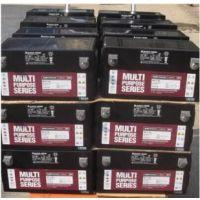济南大力神蓄电池LBT12-100规格价格及哪家好