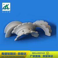 厂家直销 干燥塔吸收塔填料 陶瓷填料  陶瓷异鞍环