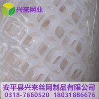 华东塑料网 海西塑料网 网面育雏设计图