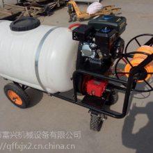 小型手推式汽油打药机 富兴直销果园高压泵喷雾机 农药喷洒机图片