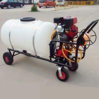 自走式三轮打药机 自走式三轮打药机宽度可调 带方向盘喷雾器
