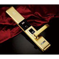 成都指纹锁家用防盗门锁密码锁智能电子门锁磁卡锁手机控制 JYX-F9900