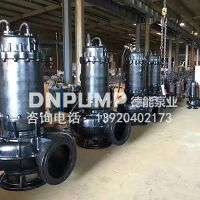 100WQ热水潜水排污泵耦合安装