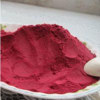 顶能天然色素红甜菜粉出厂价