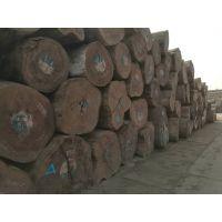 非洲刚果金柚木王大美木豆原木刨切材大板料