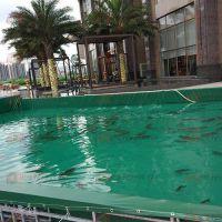 无气味无毒养殖鱼池 环保防漏水水池 耐磨无公害帆布鱼池三防产业用布农业