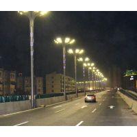 雅安12米大型景观造型灯 贵阳玉兰花灯 科尼星组合灯