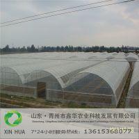 薄膜温室设计