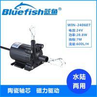 蓝鱼WIN-240607家用微型抽水泵24V直流无刷潜水泵小型鱼池假山水循环泵