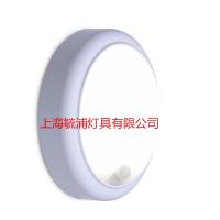 飞利浦明晖LED椭圆吸顶灯WL008C 15W
