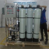 广东厂家设计生产化工制剂厂专用去离子制水设备找晨兴定制