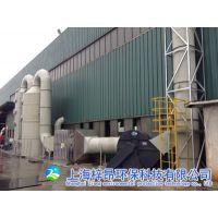 浙江上海江苏汽车厂烤漆房喷漆废气处理设备