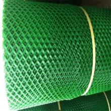 聚乙烯塑料平网 鸡舍脚垫网 透明养殖网