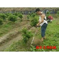 花卉种植背负式松土机 汽油锄草机