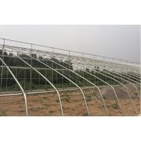 强骏温室镀锌大棚蔬菜棚制图造价泊头生产厂家