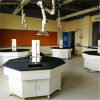 实验室家具定制厂家,禄米生产实验台,通风柜,药品柜
