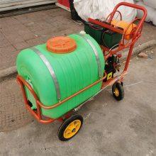 大容量打药机 自走式汽油高压喷药机 启航柴油三轮打药机