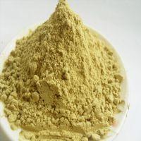 生姜粉 小姜粉 调料姜粉 原产基地供应 小黄姜 辣味足 红糖生姜茶原料