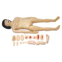 全功能女性护理人训练模型,男女性全功能护理训练模拟人