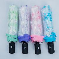创意POE透明伞 礼品伞广告伞三折全自动伞 折叠环保时尚雨伞