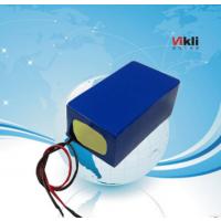 VIKLI锂电池组AGV自动搬运小车24v40ah磷酸铁锂电池动力电池
