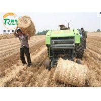 小麦秸秆打捆机 冬储饲料打包机 养殖饲料包膜机