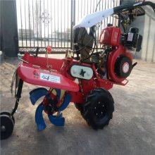 毕节草莓种植开沟机 电启动柴油培土机 起垄种植开沟机 浩发