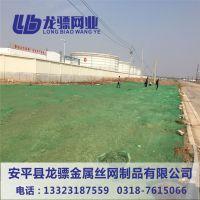 优质三针盖土网 绿色防尘遮阳网 盖土网怎么卖